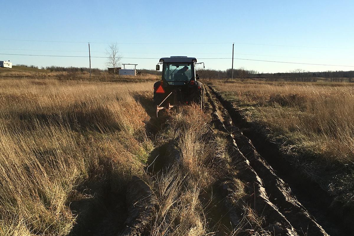 NOC Agroforesterie : biodiversité et occupation du territoire
